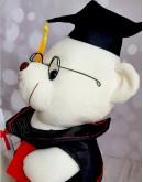 Мишка «Студент» 33 см